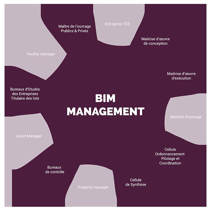 Schéma des métiers BIM Management